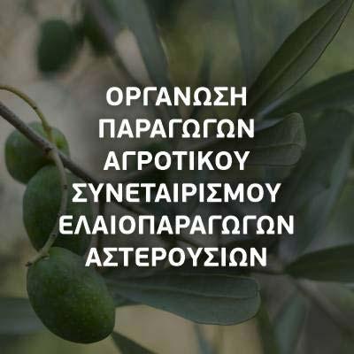 ΟΠΑΣΕ ΑΣΤΕΡΟΥΣΙΩΝ, Αγροτικός Συνεταιρισμός
